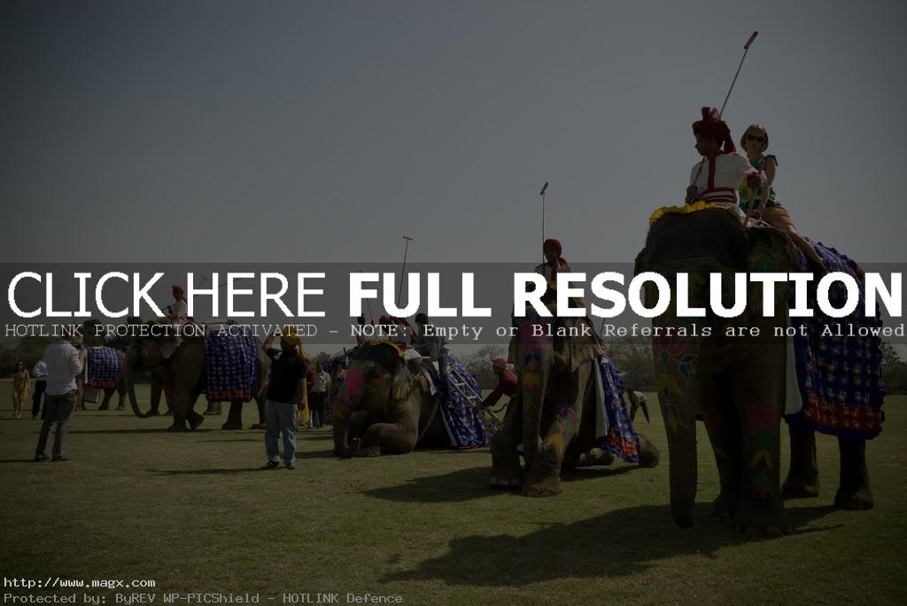 elephant polo Expensive Elephant Polo and Horse Parade