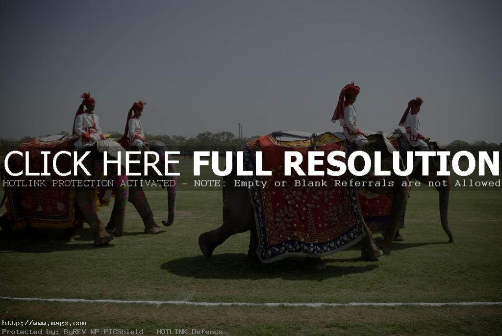 elephant polo1 Expensive Elephant Polo and Horse Parade