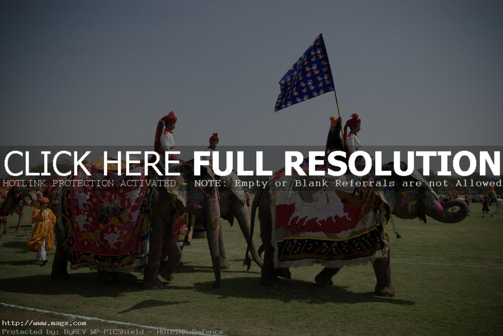 elephant polo2 Expensive Elephant Polo and Horse Parade