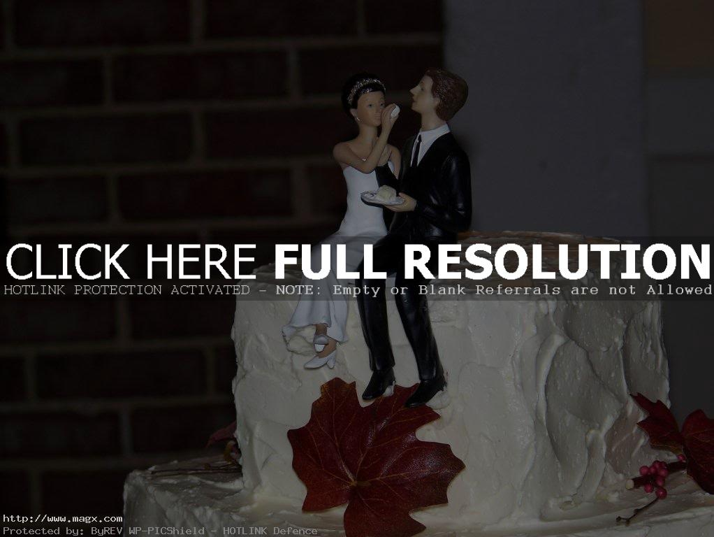 wedding cakes toppers3 Best Wedding Cake Toppers