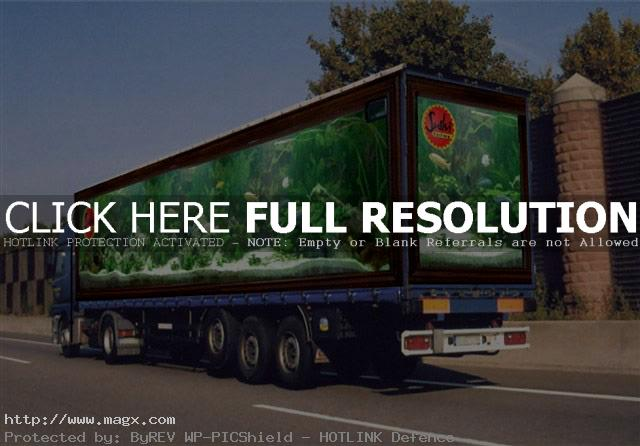 visual illusion4 Painted Optical Truck Illusions