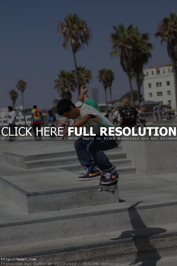 venice beach9 Famous Venice Beach Skate Park in Los Angeles