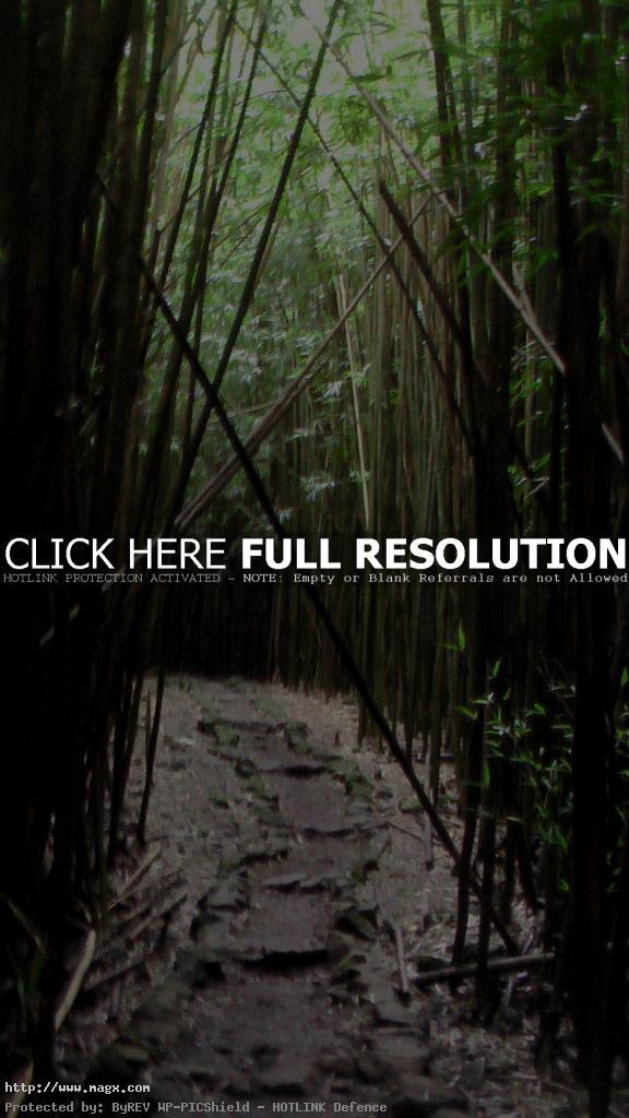 maui hikes6 Haleakala National Park   The Best Hikes on Maui