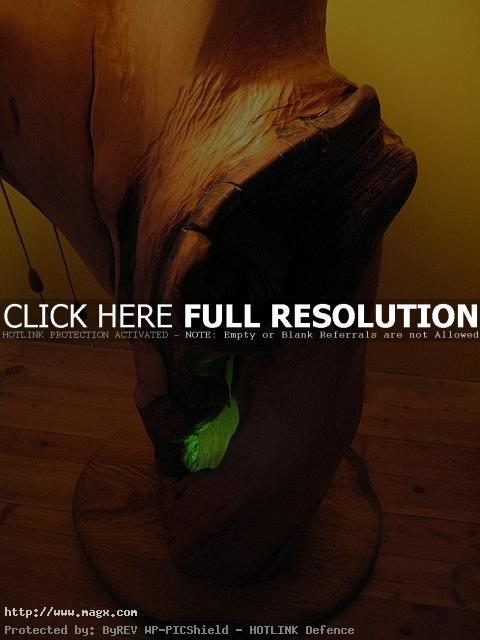 wooden lamp4 Wooden Lamps   Nature Form Furniture