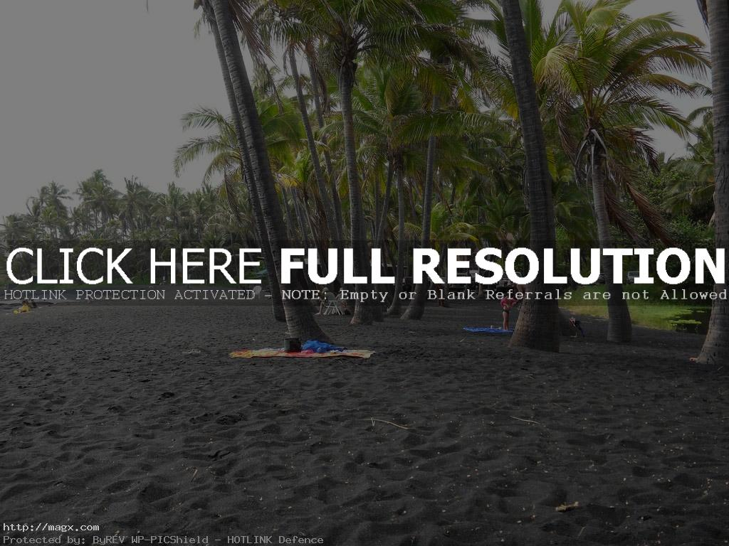 black beach10 Panuluu Hawaiian Black Sand Beach