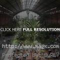 Tropical Garden inside Atocha Ra...