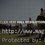 Expensive Elephant Polo and Horse Parade