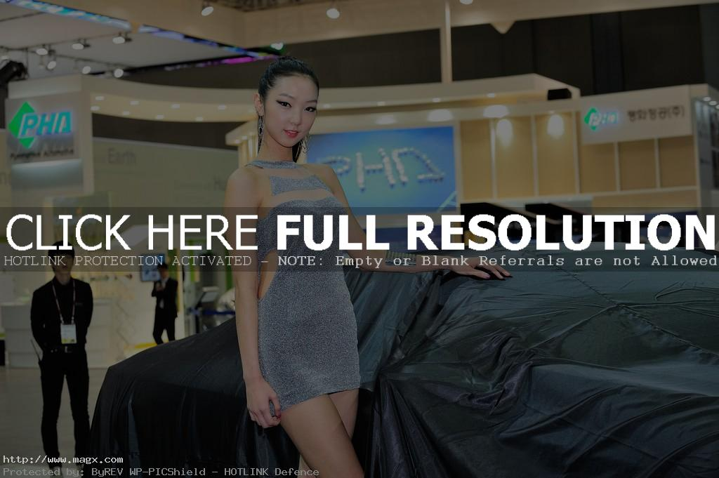korean girls14 Most Beautiful Promotional Models of Seoul Motor Show 2013